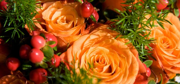 Orange Roses And Red Berries