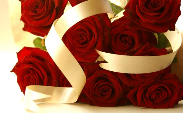 Valentines Day Stacked Red Roses